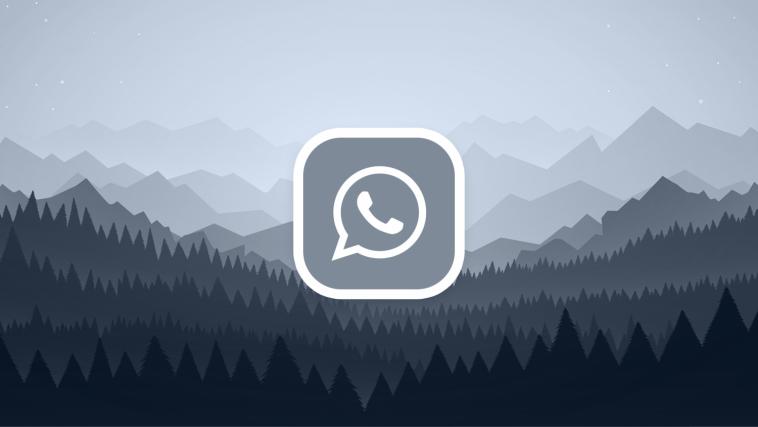 Download OGWhatsApp Versi Terbaru Untuk Android 2021