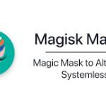 Magisk Module